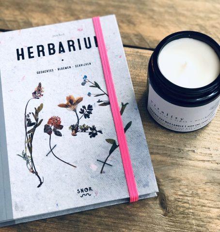 VITALITY geurkaars sojakaars herbarium